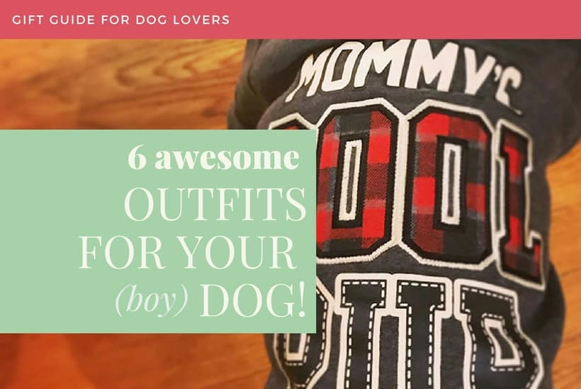 6 Awesome Outfits for your (boy) Dog