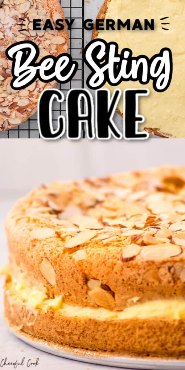 Bee Sting Cake (EASY)