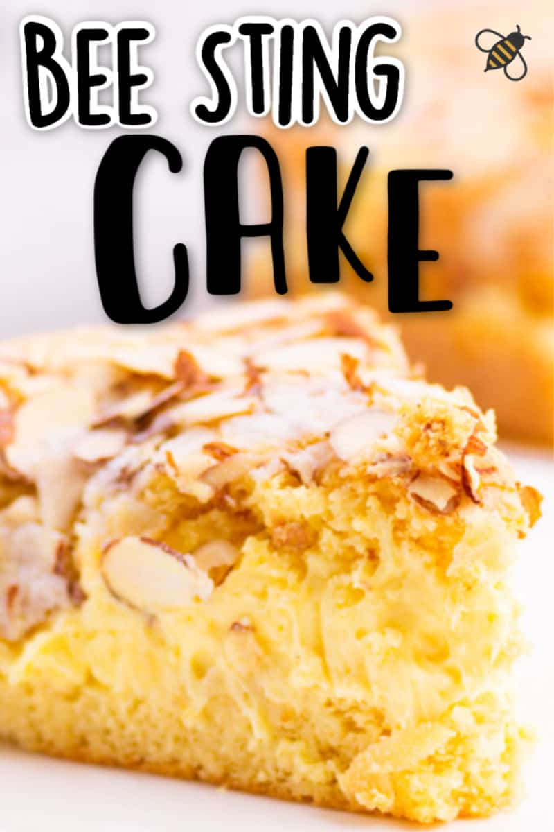 Bee Sting Cake Recipe (easy!)