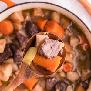 A spoonful of freshly cooked beef stew