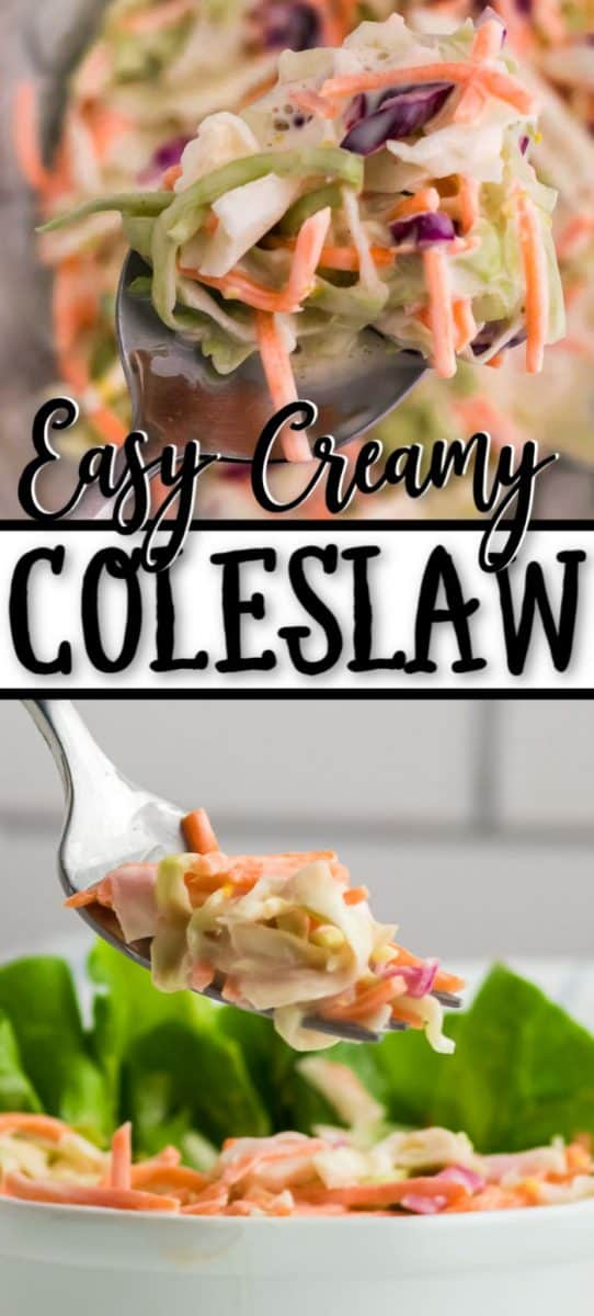 Easy Coleslaw Salad Recipe