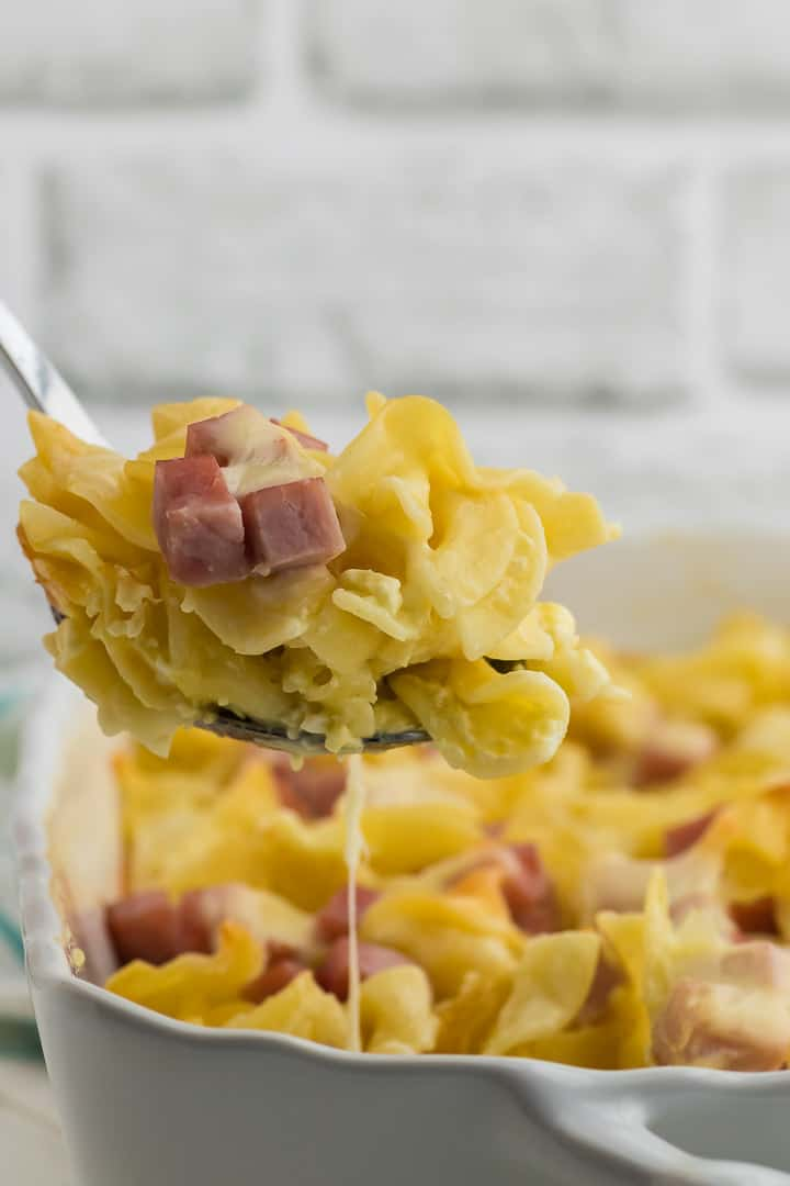 a spoonful of ham and noodle casserole