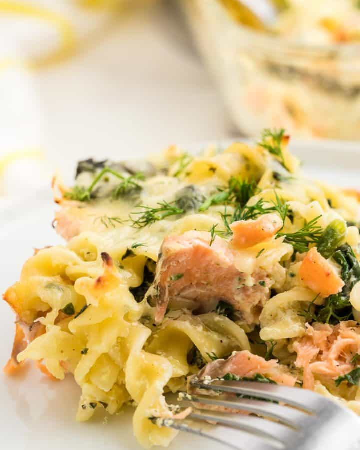 freshly baked salmon casserole on a white plate
