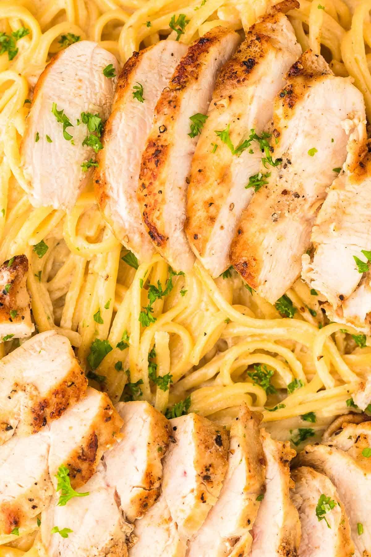 closeup of freshly cooked Chicken Alfredo