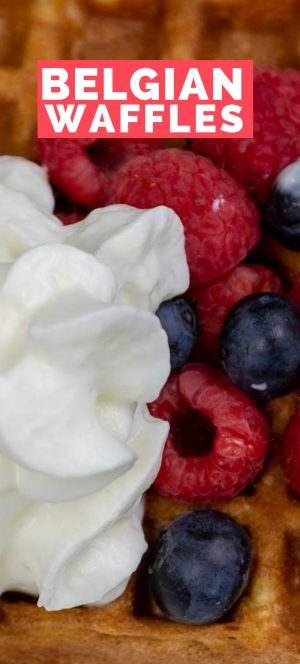Slice of gluten-free Belgian Waffles with fresh berries and whipped cream