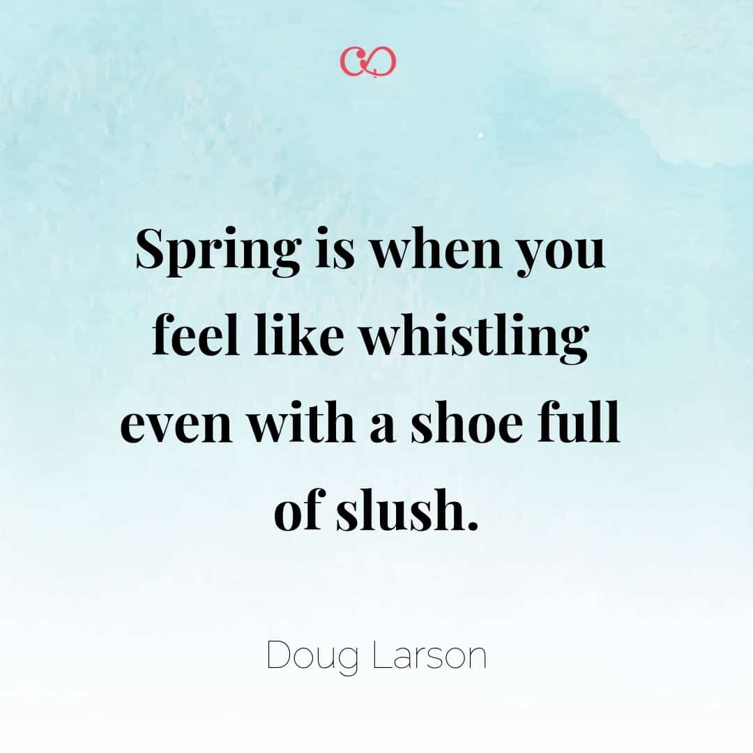 Quote by Doug Larson - Spring is when you feel like whistling even with a shoe full of slush.