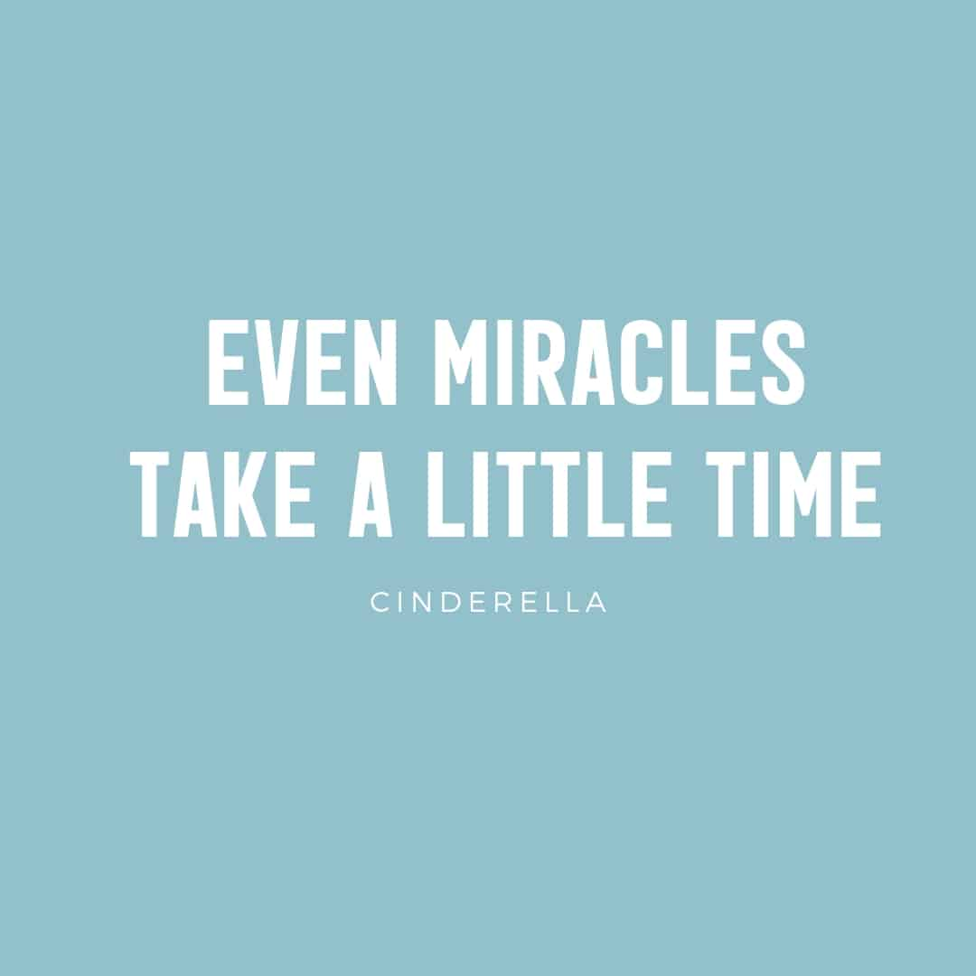 Quote: Even Miracles Take A Little Time - Cinderella
