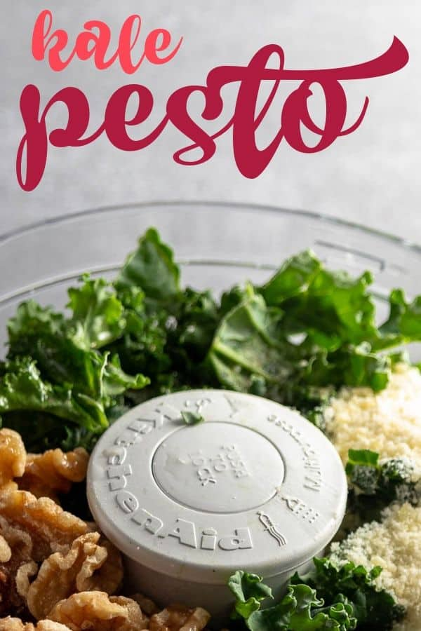 food processor filled with kale, walnuts, parmesan, and garlic