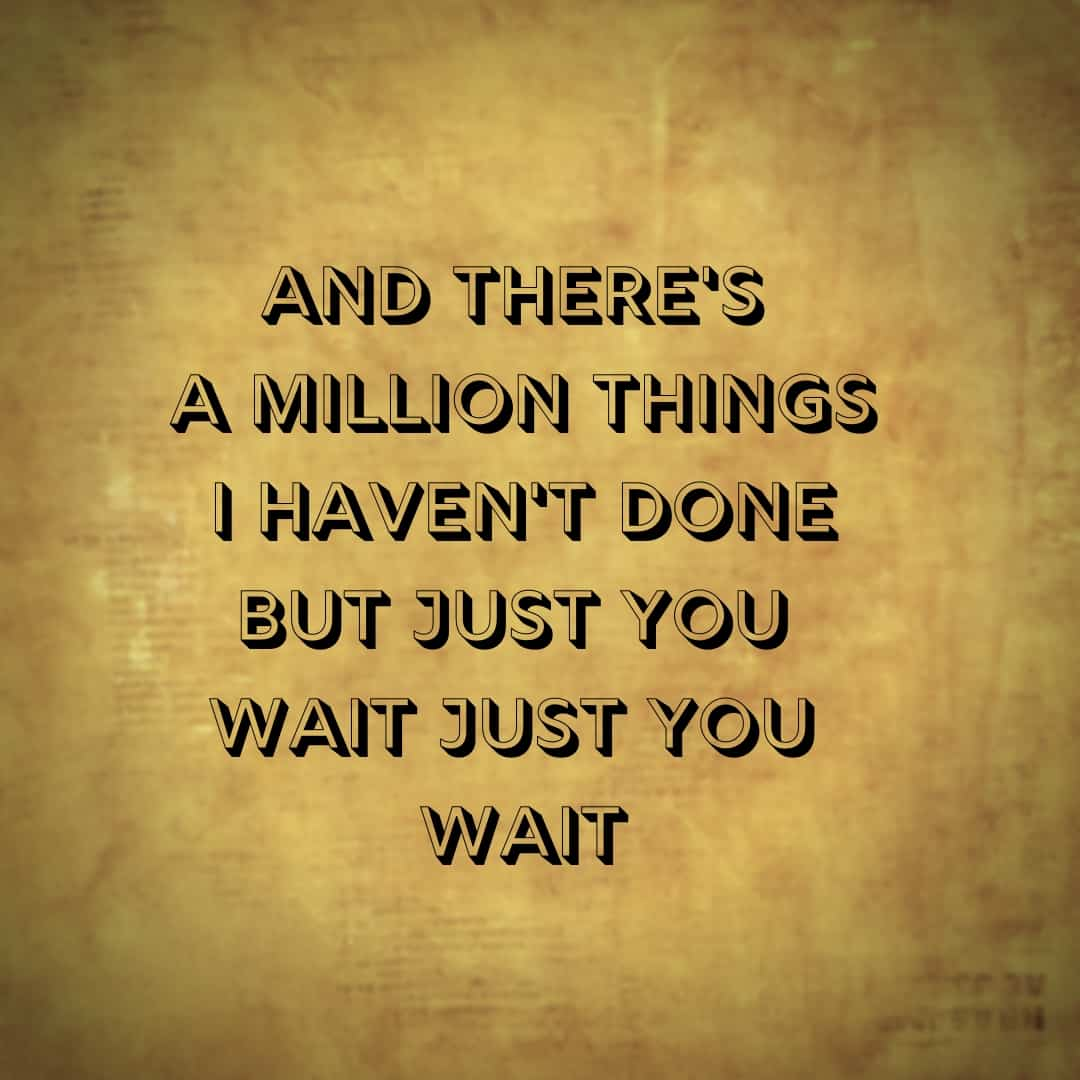 And There's A Million Things I haven't Done But Just Wait, Just You Wait, Hamilton The Musical