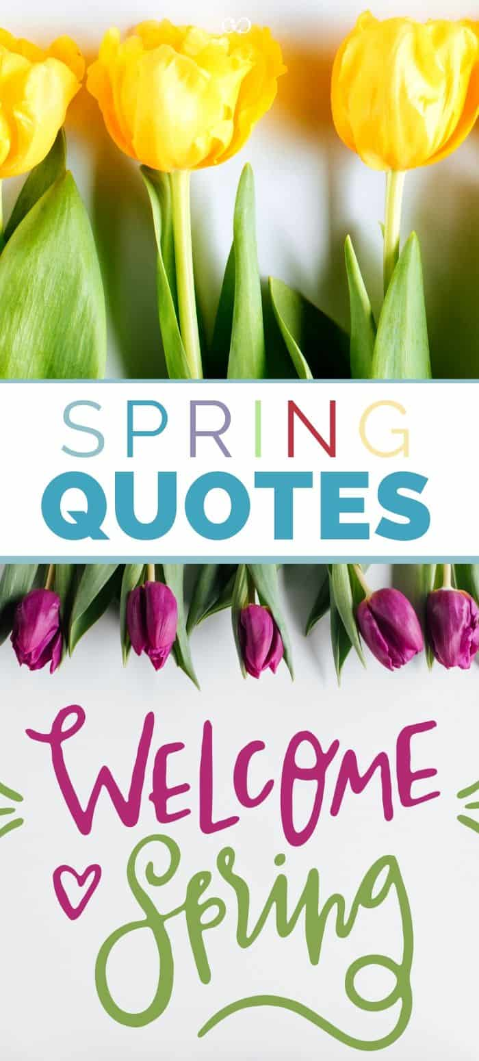 21 Spring Quotes