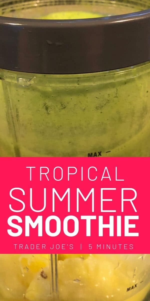 Trader Joe's Tropical Summer Smoothie
