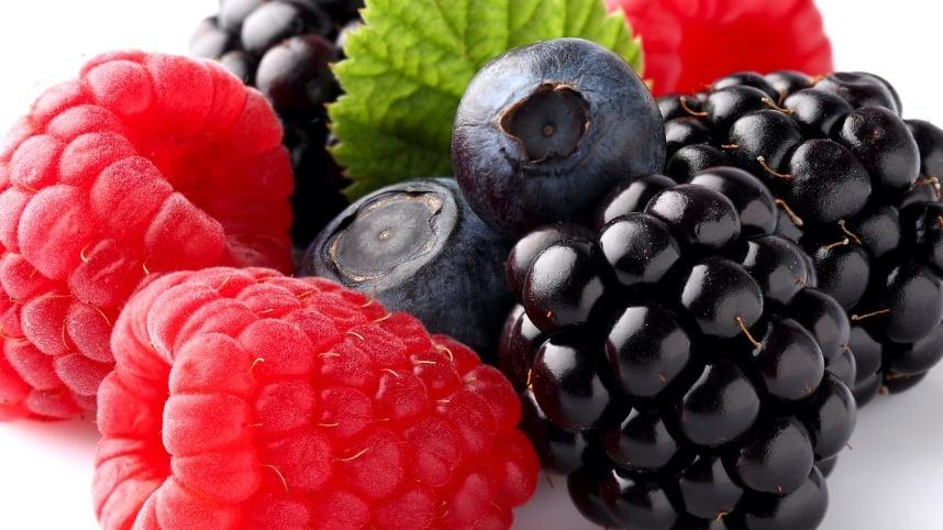 Fresh berries, including blackberries, raspberries, and blueberries