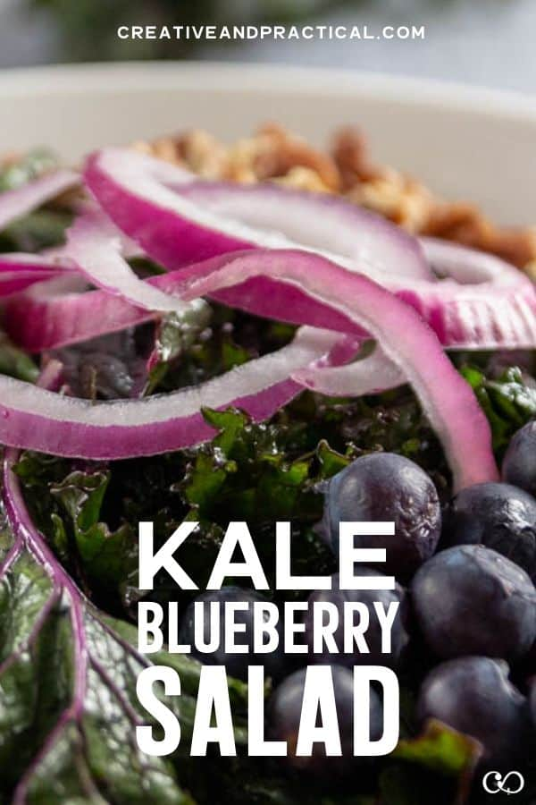 Kale Blueberry Salad with goat cheese and pecans and red onion