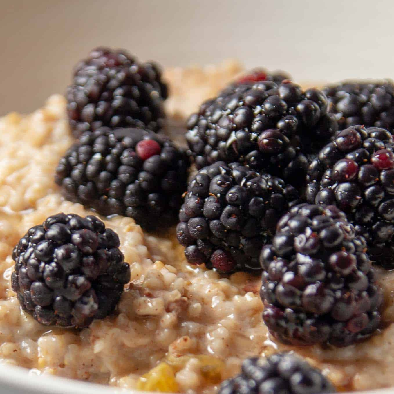 A bowl of berry oatmeal with blackberries, crushed pecans, and maple syrup.